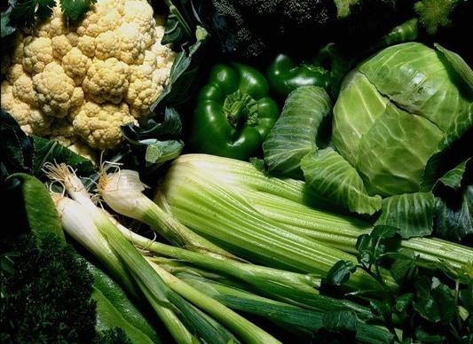 Овощи зеленого цвета – источники минералов и витаминов